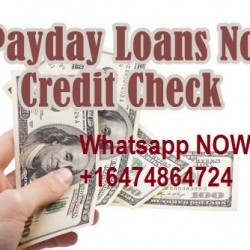 1168f4368abbed622d8e03d2b874ab89--small-payday-loans-instant-payday-loans