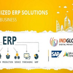 erp-solution-providers-uae